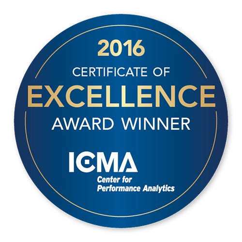 15-520-CPA-Web-Button-Excellence-2016.png